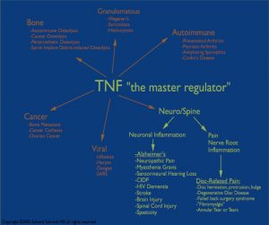 TNF, The Master Regulator, Diagram by Edward Tobinick, MD